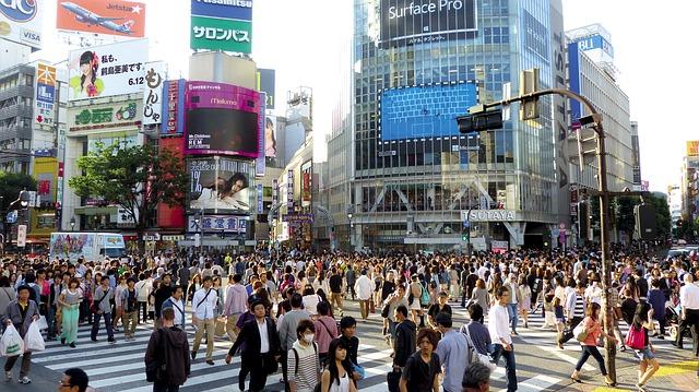 bosque de los suicidios- Japón Tokio